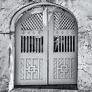 Courtyard Gates at the Oldest House  by John  Kapusta