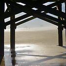 Fog Comes To The Beach by Dawne Dunton