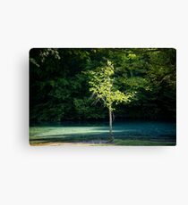 By the Still Waters Canvas Print