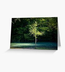 By the Still Waters Greeting Card