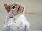 Oliver Twist Squirrel by FrankieCat