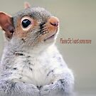 Oliver Twist Squirrel by FrankieCat