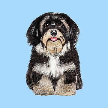 Havanese Dog Digital Painting Art Portrait by aashiarsh