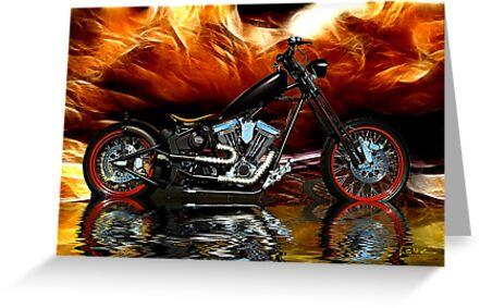 Harley by gemlenz
