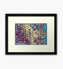 If These Walls Could Talk II Framed Print