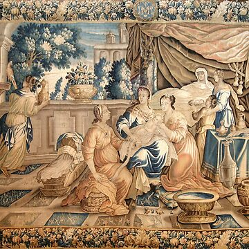 Aubusson Tapestry 18th Birth of the Virgin Mary  by CarlosV
