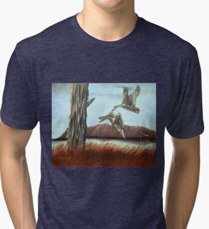 RESTING PLACE, Pastel Painting, for prints and products Tri-blend T-Shirt