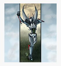 Prince of the Sky Photographic Print