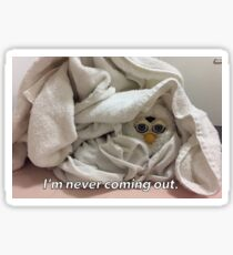I'm never coming out.  Sticker