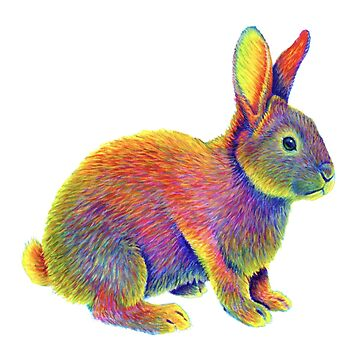Colorful Chinese Zodiac Animals - Year of the Rabbit by lioncrusher