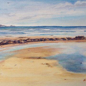 Early walk on the beach in northern Tasmania by Ian Shiel  by Ruckrova
