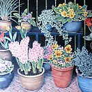 Flower Pots by Ann Nightingale