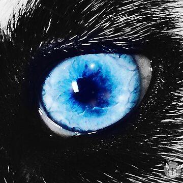 Crystal Eye by YukilapinBN