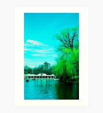 The Boathouse Art Print
