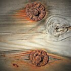 Rusty hardware by the Bay by Martha Sherman