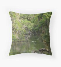 Blue Springs Park Throw Pillow