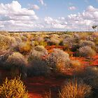 Floral Landscape of Central Australia 2 by Lexa Harpell