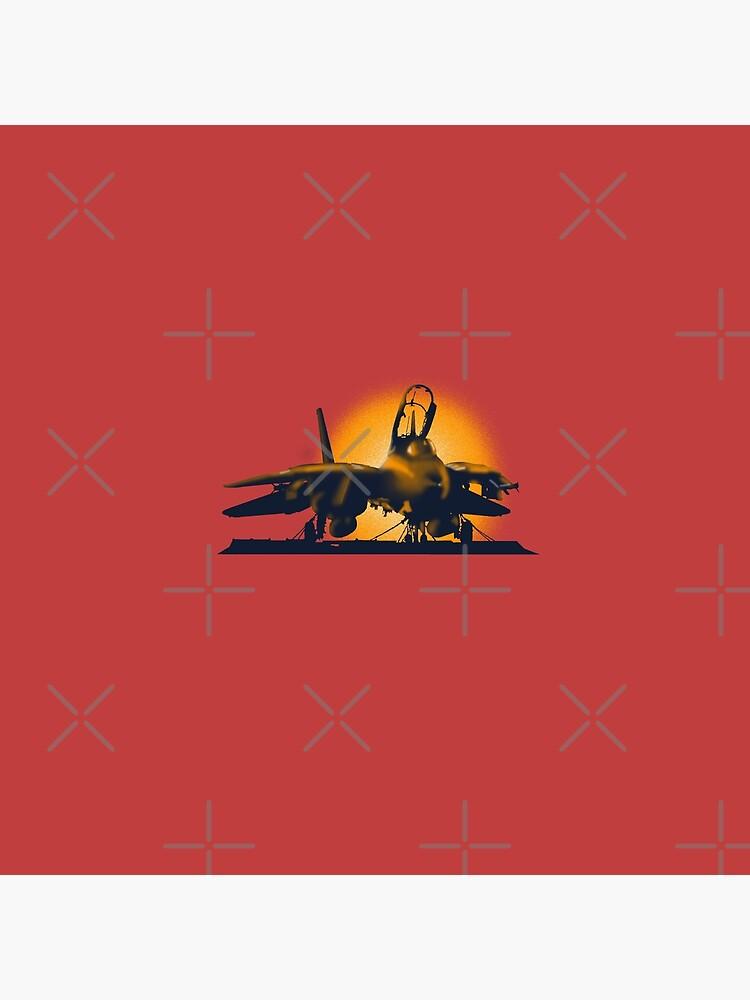Jet F-14 Tomcat von sibosssr