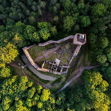 Ruins of medieval castle Wangenbourg aerial drone view, Alsace, France by sorokopud