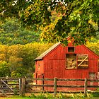 The Barn by TJ Baccari Photography