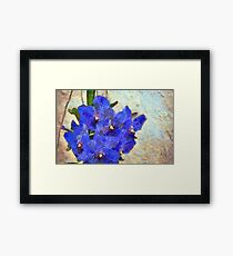 Vandas in Bloom Framed Print