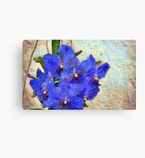 Vandas in Bloom Canvas Print