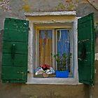 WINDOW COLOURS by June Ferrol