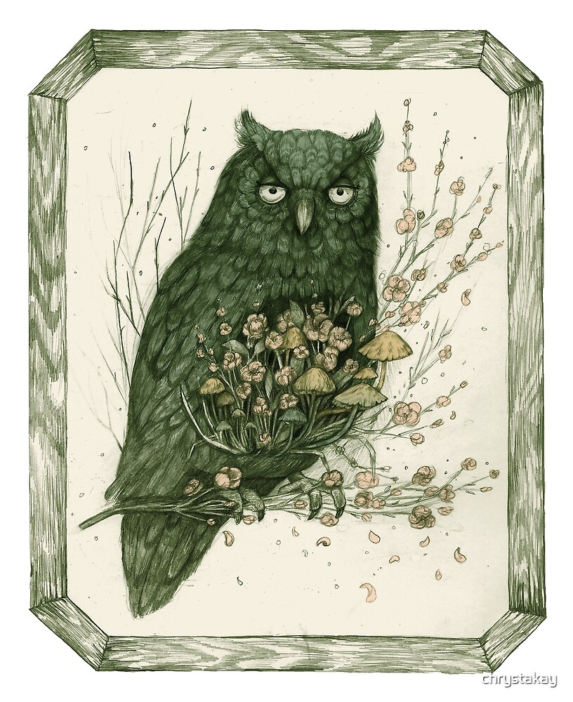Messenger    Surreal Owl Nature Illustration by chrystakay