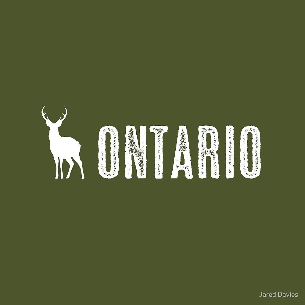 Deer: Ontario, Canada by MilitaryCandA