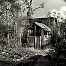 The  Old  Cuban pig House by garry stokoe