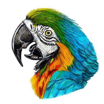 parrot portrait  by ilustradsn