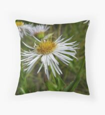 An insect Throw Pillow