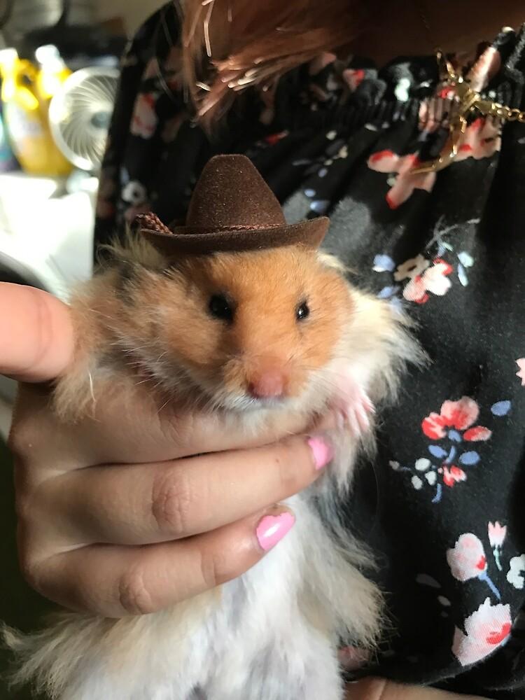 Western Cowboy by PorceIain