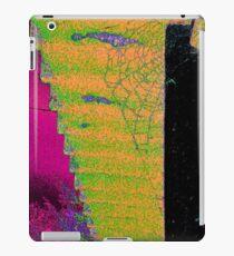 Cobweb colorful iPad Case/Skin