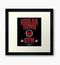 Azalea Town Gym Framed Print