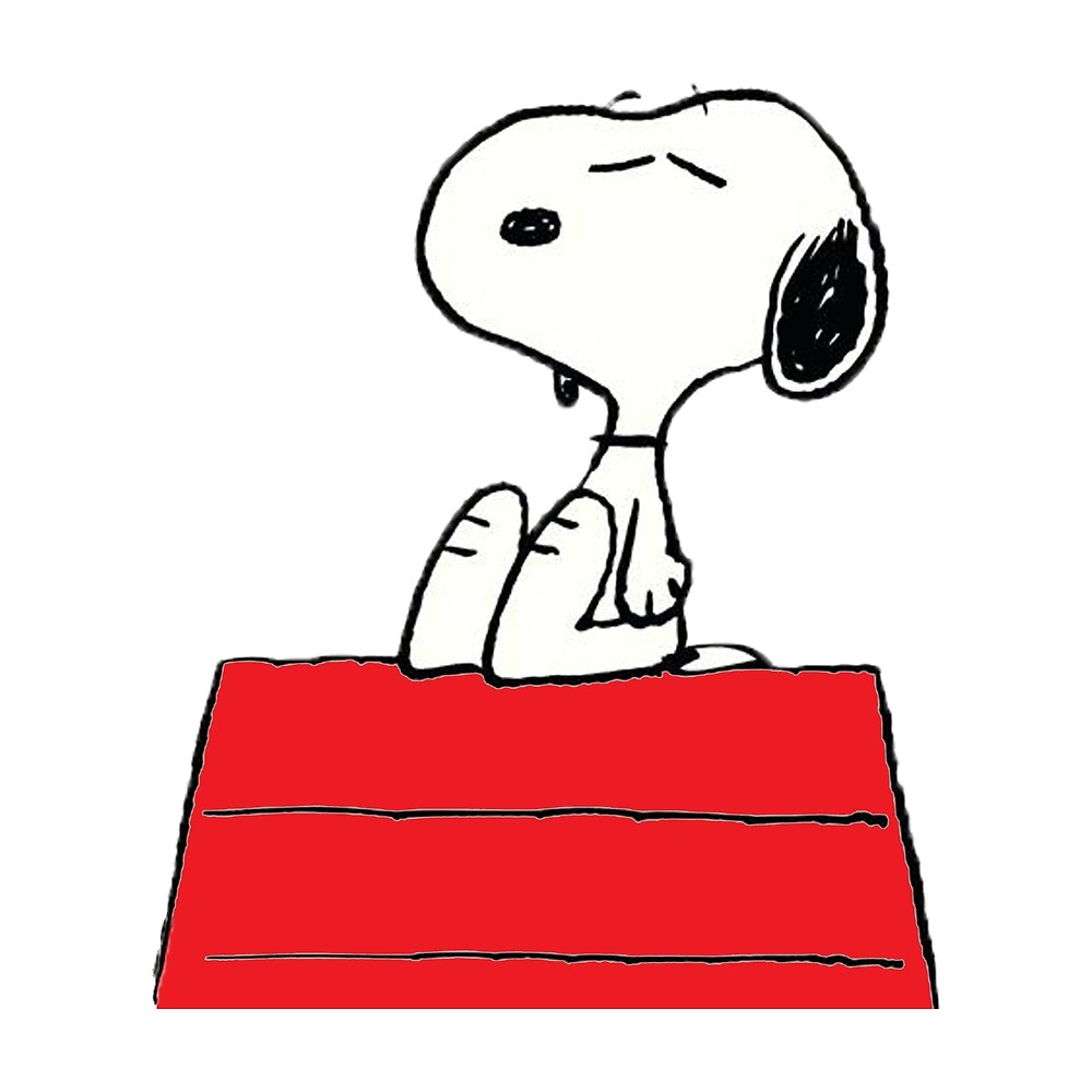 Roof Top Snoopy by Jamie Galloway