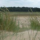 Sand Dune 2 by WhiteDiamond