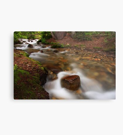Tranquility In the Stream Metal Print