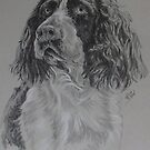 German Spaniel by BarbBarcikKeith