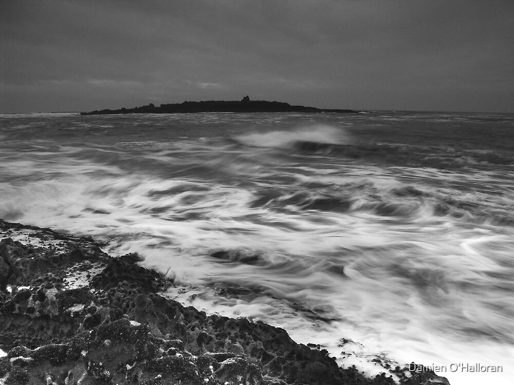 Crab Island by Damien O'Halloran