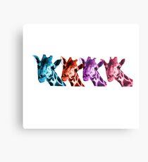 Giraffe Funny Color Heads Shirt Metal Print
