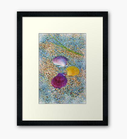 Shoreline Brilliance Framed Print