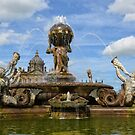 Castle Howard and Fountain by Carol Bleasdale