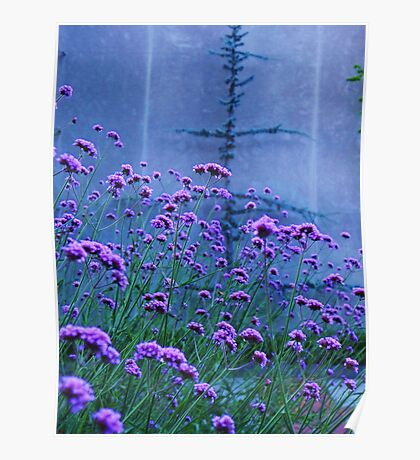 Purple lavender and blue flowers Poster