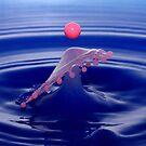 Net Ball by Ann  Van Breemen