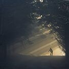 Light! by Patrice Mestari