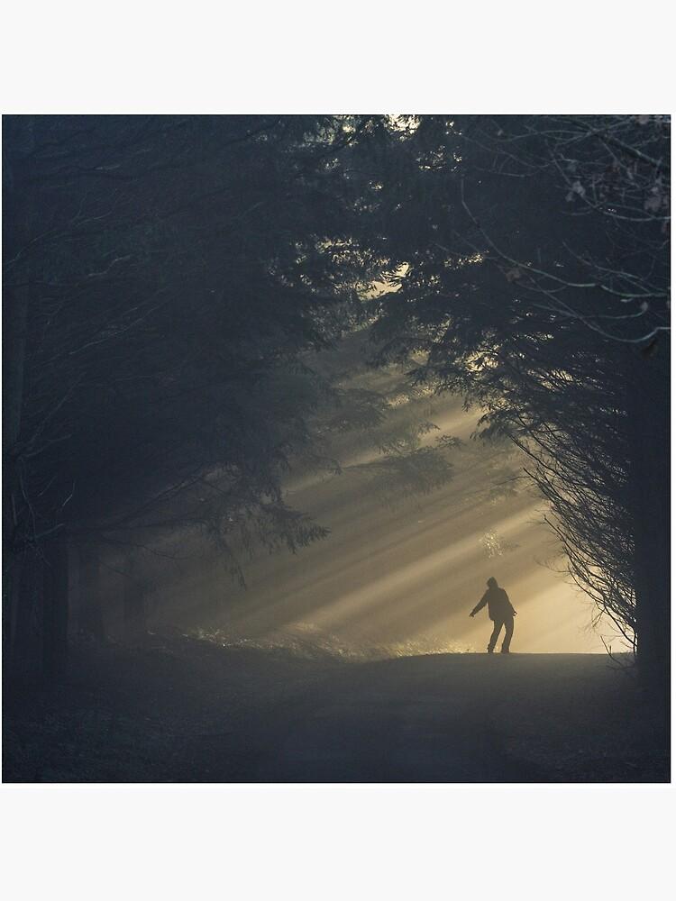 «Light !» par patricemestari