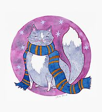 Smart Witch Cat in a Blue and Bronze Scarf Photographic Print