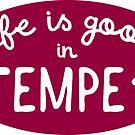 Das Leben ist gut in Tempe von its-anna