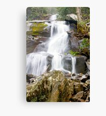 Beautiful Water Falls Canvas Print